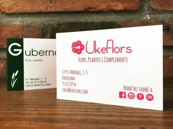 UkeFlors. Flors, plantes i complements